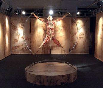 real-bodies-vitruviano-min-roma